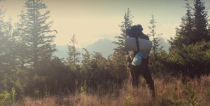 Wanderer in den Wäldern